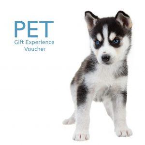 Pet Portrait Gift Experience Voucher